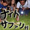 ナイトサファリ(石垣島)