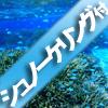 ボートシュノーケリング付(石垣島)