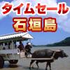 ANAで行く♪  夏沖縄 石垣島