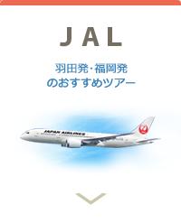JAL日本航空で行く沖縄ツアー