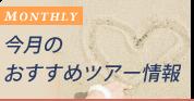 今月のおすすめ沖縄ツアー